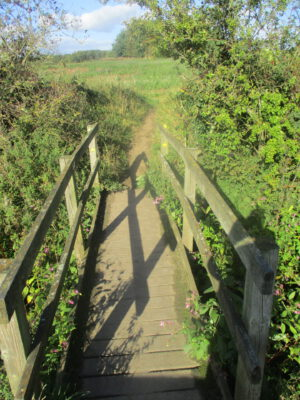 Small wooden bridge crossing stream leading to footpath into field