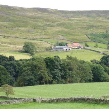 Farm on springline [Margaret Atherden]